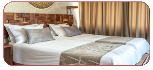 Taleni Africa Accommodation Options